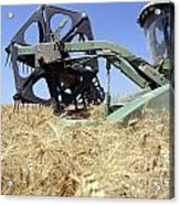 Combine Harvester  Acrylic Print by Shay Fogelman