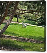 Come Sit - Enjoy Acrylic Print