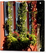 Come To My Window Acrylic Print by Karen Wiles