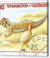 Common Wonder Gecko Lizard Acrylic Print