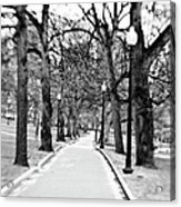 Commons Park Pathway Acrylic Print by Scott Pellegrin