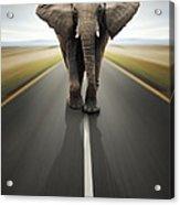 Heavy Duty Transport / Travel By Road Acrylic Print