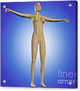 Conceptual Image Of Female Nervous Acrylic Print