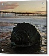 Conch Shell And Pier 2 10/17 Acrylic Print