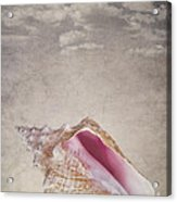 Conch Shell On Vintage Background Acrylic Print