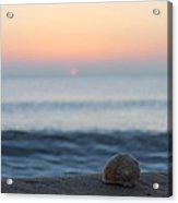 Conch Shell Sunrise Acrylic Print