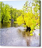 Concord Acrylic Print by Nigel Fletcher-Jones