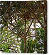 Conservatory Denver Botanic Gardens Acrylic Print