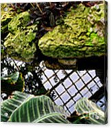 Conservatory Reflections Acrylic Print