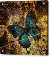 Contemplating The Butterfly Effect  Acrylic Print