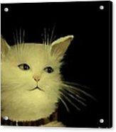 Contemplative Cat   No.1 Acrylic Print