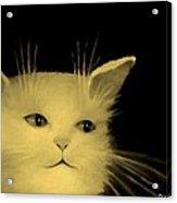 Contemplative Cat   No.3 Acrylic Print