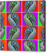 Contemporary Pelicans II Acrylic Print