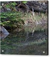 Continental Divide Pond Acrylic Print