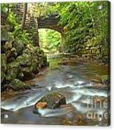 Cook Forest Stream Under The Bridge Acrylic Print