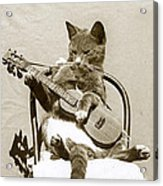 Cool Cat Playing A Guitar Circa 1900 Historical Photo By Photo  Henry King Nourse Acrylic Print