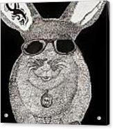 Cool Rabbit Acrylic Print