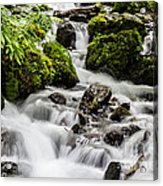 Cool Waters Acrylic Print