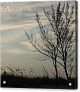 Cool Winters Day Acrylic Print