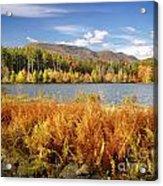 Cooper Lake Acrylic Print