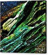 Coos Canyon Y241 Acrylic Print