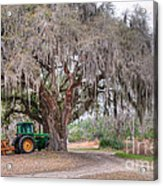 Coosaw Cross Roads With Live Oak Acrylic Print