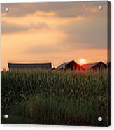 Coountry Sunset Acrylic Print by Victoria Sheldon
