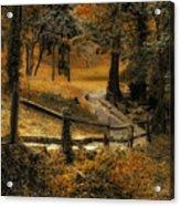 Copper Field Acrylic Print