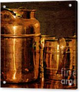 Copper Acrylic Print by Lois Bryan