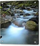 Coquihalla River 2 Acrylic Print
