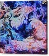 Coral Heaven Acrylic Print