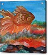 Coral Land Goldfish Acrylic Print