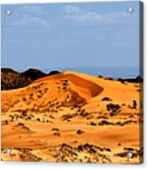 Coral Pink Sand Dunes Utah Acrylic Print