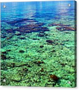 Coral Reef Near The Island At Peaceful Day. Maldives Acrylic Print