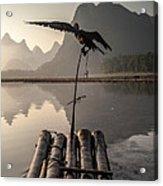 Cormorant Fishing On Li River Acrylic Print
