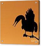Cormorant Silhouette Acrylic Print