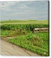 Corn Clouds Sun Rusty Gate Acrylic Print by Wilma  Birdwell