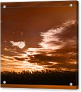 Corn Field Silhouettes Textured Acrylic Print