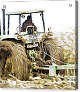 Corn Harvest Acrylic Print