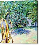 Corn Stalk And Apple Tree  Autumn Lovers Acrylic Print