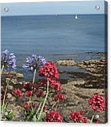 Cornwall Newlyn Coast One Acrylic Print