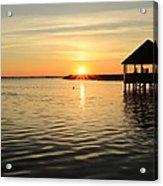 Corolla Sunset Acrylic Print by Brenda Schwartz