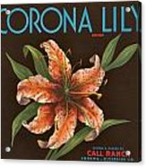 Corona Lily Crate Label Acrylic Print