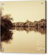 Corroboree Billabong In Sepia Acrylic Print