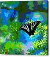 Cosmic Butterfly In The Pines Acrylic Print