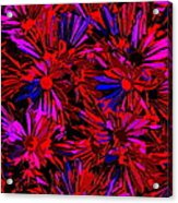 Cosmic Flower Wall Acrylic Print