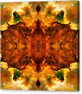 Cosmic Kaleidoscope 2  Acrylic Print by Jennifer Rondinelli Reilly - Fine Art Photography