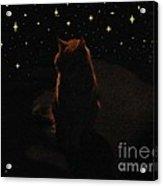 Cosmic Kitty Acrylic Print by Jacquelyn Roberts