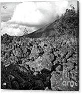 Costa Rican Volcanic Rock  Acrylic Print