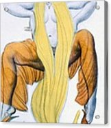 Costume Design For A Bacchic Dancer Acrylic Print